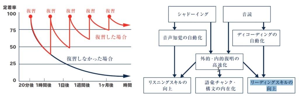 トライズ(TORAIZ)無料カウンセリング(オンライン)。顧問の門田先生の「シャドーイングと音楽の科学」より